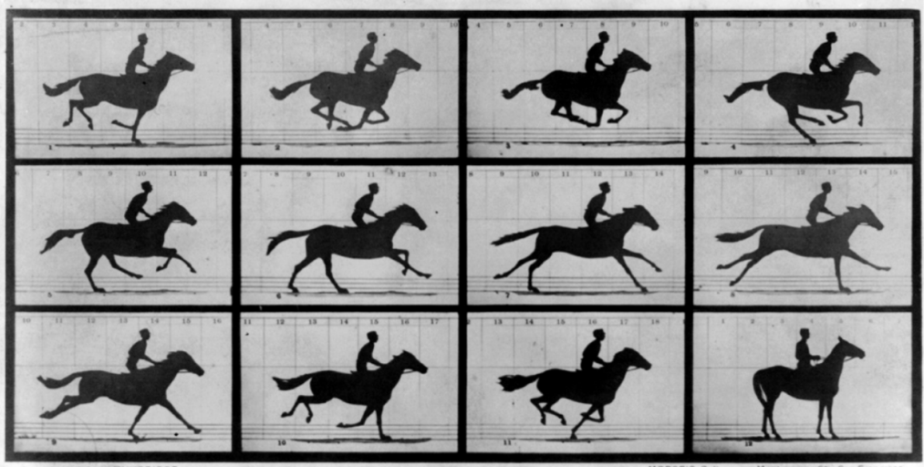 Image from the Muybridge motion analysis book
